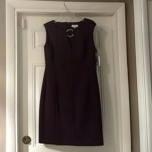 Calvin Klein Plum Dress Size 12, New With Tags